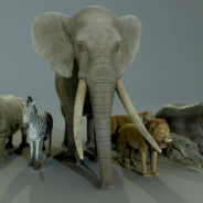 AFRICAN_ANIMALS_PACK_RENDER