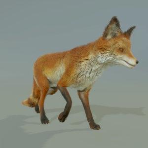 FOX_RENDER