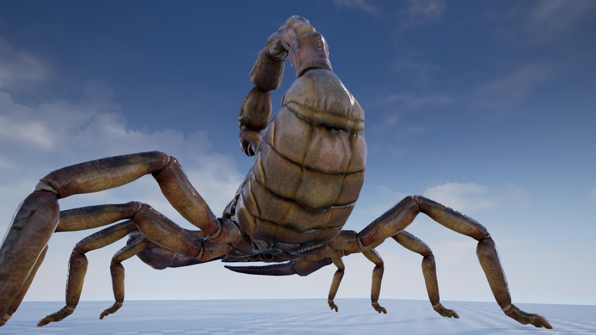 Giant hairy desert scorpions